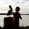 lake1-small.jpg